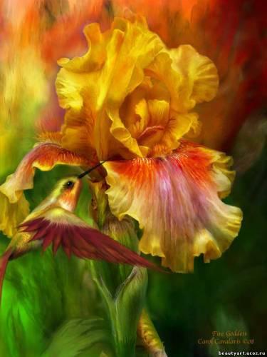 http://beautyart.ucoz.ru/_si/0/s10991960.jpg