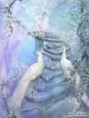 http://beautyart.ucoz.ru/_si/0/s20841550.jpg